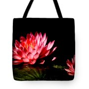Water Lily 5 Tote Bag by Julie Palencia