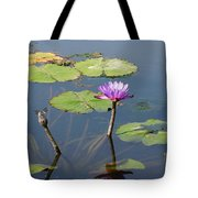 Water Lily And Dragon Fly One Tote Bag