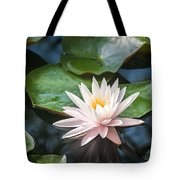 Water Lily And Lily Pads Tote Bag