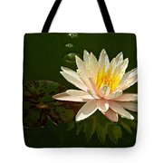 Water Lily And Pad Tote Bag