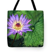 Water Lily At The Conservatory Of Flowers Tote Bag