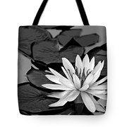 Water Lily Black And White Tote Bag