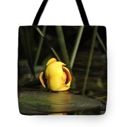 Water Lily Bud Tote Bag