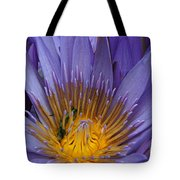 water lily from Madagascar Tote Bag
