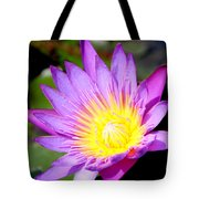 Water Lily In Purple Tote Bag