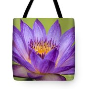 Water Lily Lindsey Woods Macro Tote Bag