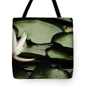 Water Lily Pad Tote Bag