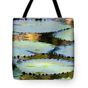 Water Lily Pads In The Morning Light Tote Bag