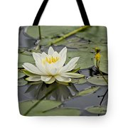 Water Lily Pictures 45 Tote Bag