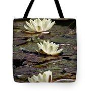 Water Lily Pictures 64 Tote Bag