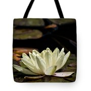 Water Lily Pictures 67 Tote Bag