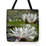 Water Lily Pictures 70 Tote Bag