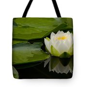 Water Lily Reflection II Tote Bag