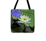 Water Lily Serenity Tote Bag