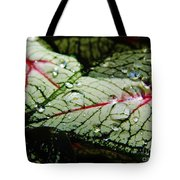 Water On The Leaves Tote Bag