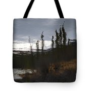 Water Paint Tote Bag