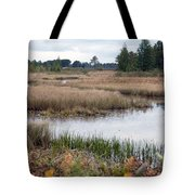 Water Path Tote Bag