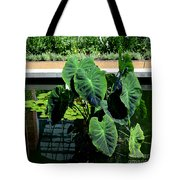 Water Plants Tote Bag