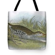 Water Rail Tote Bag