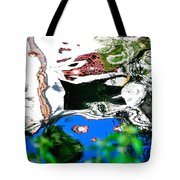 Water Reflection 29354 Tote Bag