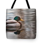 Water Reflection Tote Bag