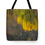 Water Reflections Abstract Autumn 2 B Tote Bag