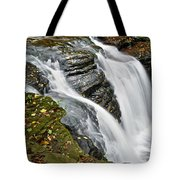 Water Rushes Forth Tote Bag