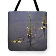 Water Scene Tote Bag