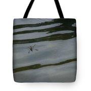 Water Skipper In Digital Oil Pastel Tote Bag