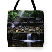 Water Steps In Fairmount Park Tote Bag