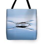 Water Strider Tote Bag