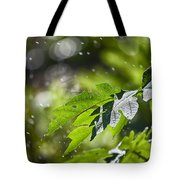 Water-the Essence Of Life V3 Tote Bag