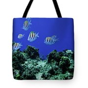 Water World One Tote Bag