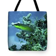 Water World Three Tote Bag