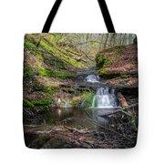 Waterfall At Parfrey's Glen Tote Bag