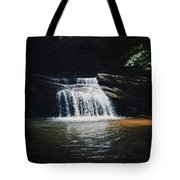 Waterfall At Table Rock National Forest Tote Bag
