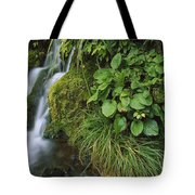 Waterfall Egmont Np New Zealand Tote Bag