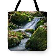 Waterfall Great Smoky Mountains  Tote Bag