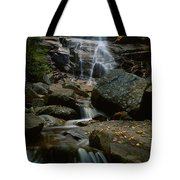 Waterfall In A Forest, Arethusa Falls Tote Bag