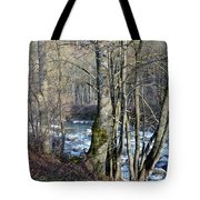 Waterfall In Winter Tote Bag