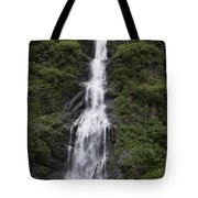 Waterfall Near Valdez Ak Tote Bag