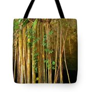 Waterfall Of Jungle Tree Roots Tote Bag