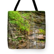 Waterfall On The Way To Thurmond Tote Bag