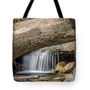 Waterfall Under Fallen Log Tote Bag