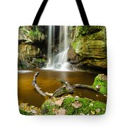 Waterfall With Autumn Leaves Tote Bag