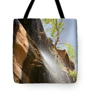 Waterfall Zion National Park Tote Bag