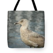 Waterfront Seagull  Tote Bag