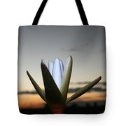 Waterlilly 3 Tote Bag