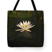 Waterlilly 5 Tote Bag