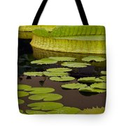 Waterlily Charm Tote Bag
